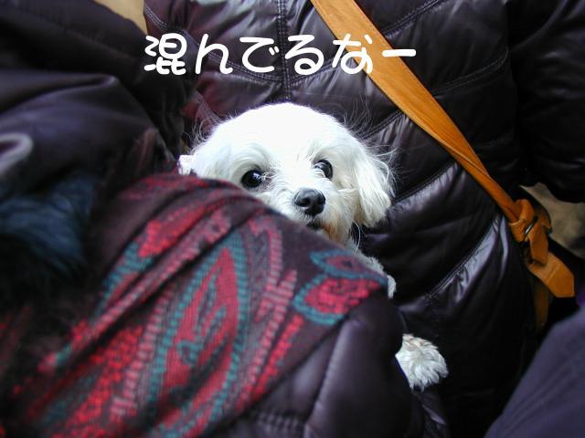 Hatumoude4